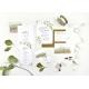 Faire-part Eucalyptus à l'aquarelle mariage végétal kinfolk