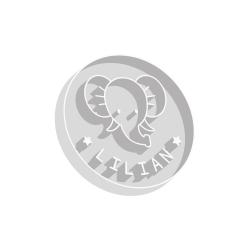 Emporte-pièce éléphant personnalisé anniversaire enfant